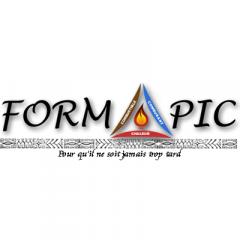 logoformapic